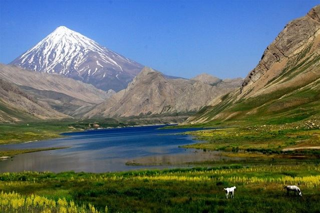 Damavand Pool