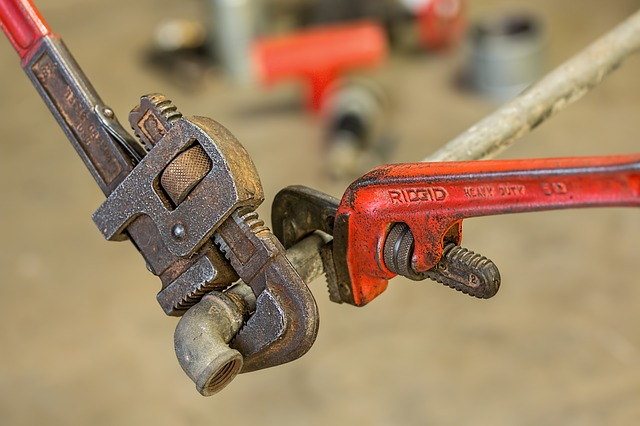 5 Reasons Why You Should Hire a Local Plumber for Your Small Business